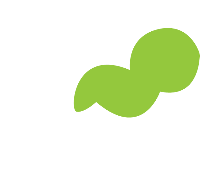 Finitive Tax Solutions